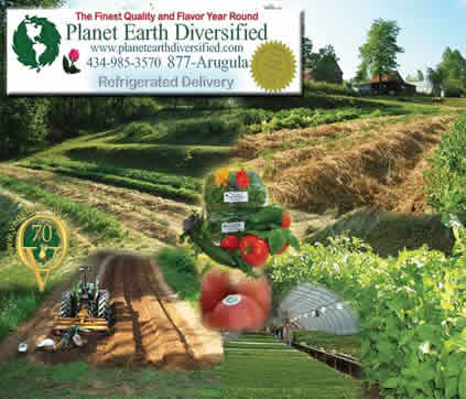 Fields and Views of the farm
